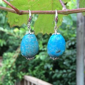 "🌹NWT Kingman turquoise ""robin egg"" earrings"